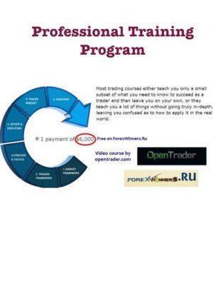 OpenTrader Professional Training Program x