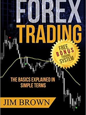 FOREX TRADING The Basics Explained in Simple Terms Forex Forex for Beginners Make Money Online Currency Trading Foreign Exchange Trading Strategies Day Trading