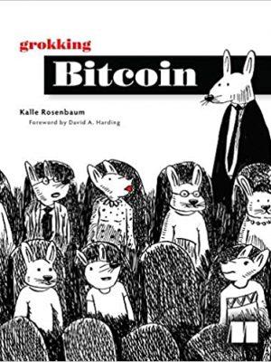 Grokking Bitcoin